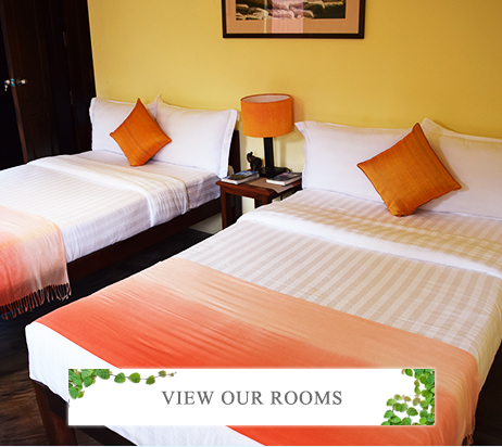 View our Rooms
